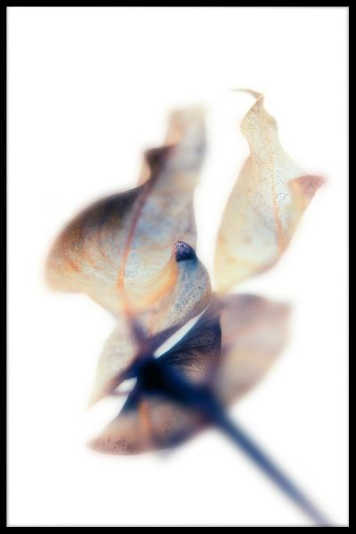 Abstract Blue Brown Toned Leaf Poster