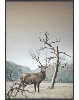 Deer and Tree at Winter Poster