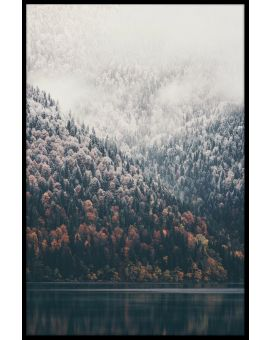 Foggy Forest Lake Poster