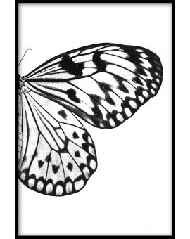 Butterfly Wing N03 Poster